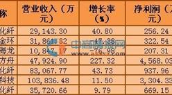 2016年一季度A股粘胶纤维行业公司收入排名