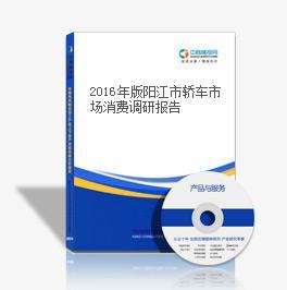 2016年版阳江市轿车市场消费调研报告
