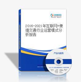 2019-2023年互联网+便捷交通行业运营模式分析报告