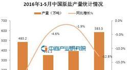 2016年1-5月中国原盐产量统计分析