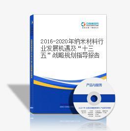 """2019-2023年纳米材料行业发展机遇及""""十三五""""战略规划指导报告"""