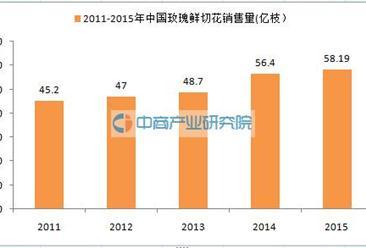 七夕情人节临近:中国玫瑰花年销量超过58亿枝