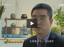 央視財經頻道采訪中商產業研究院高級咨詢顧問連偉
