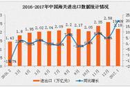 2017年1月全国货物贸易进出口数据分析:进出口总值增长19.6%