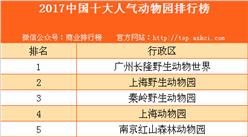 2017中国十大人气动物园排行榜