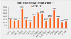 2017年3月武汉各区市房价排名分析 武汉限购会再升级吗(调控政策猜想)