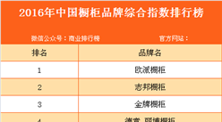 2016年中国橱柜品牌综合指数排行榜