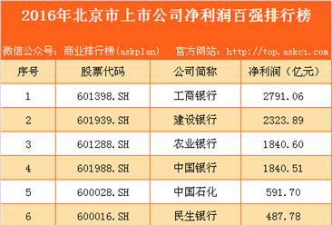 2016年北京市上市公司净利润百强排行榜