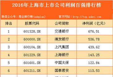 2016年上海市上市公司利润百强排行榜
