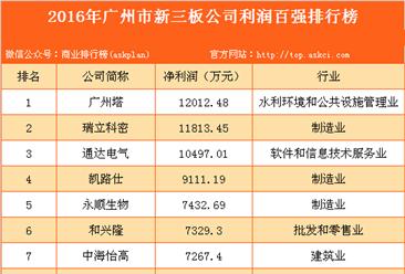 2016年广州市新三板公司利润百强排行榜