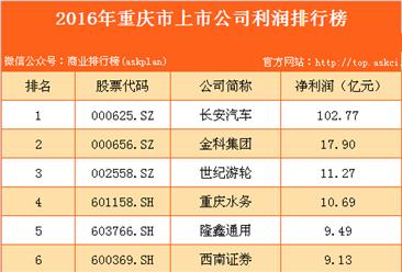 2016年重庆上市公司利润排行榜