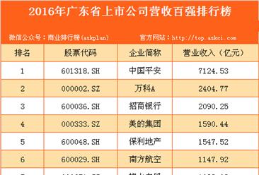 2016年广东省上市公司营收百强排行榜