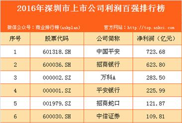 2016年深圳市上市公司利润百强排行榜