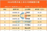 2016年四川省上市公司利润排行榜