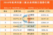 2016年杭州市新三板企业利润百强排行榜
