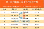 2016年河北省上市公司利润排行榜TOP50