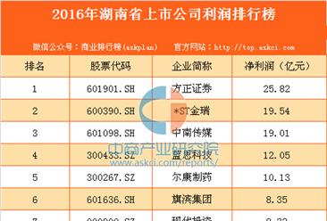 2016年湖南省上市公司利润排行榜