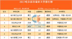 2017哈尔滨市最好大学排行榜