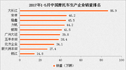 2017年1-5月中國摩托車企業銷量排名:大長江穩拿第一