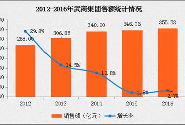 2016年中国连锁百强:武商集团经营数据分析