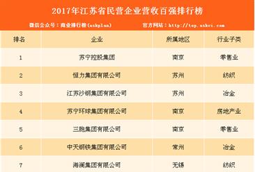 2017年江苏省民营企业100强排行榜