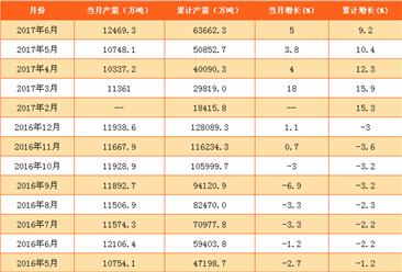 2017年1-6月铁矿石原矿产量数据分析:同比增长9.2%(附图表)