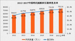 2017上半年互联网络发展状况分析:中国网民规模达7.5亿