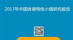 2017年中国体育特色小镇研究报告