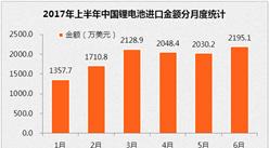 2017年1-6月中国锂电池进口十强排名分析