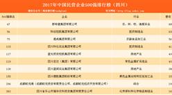 2017年民营企业500强排行榜(四川全名单)
