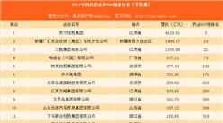 2017中国民营企业500强排行榜(零售篇):唯品会未进前三(附名单)