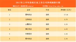 2017上半年造纸行业上市公司净利润排行榜:晨鸣纸业第一