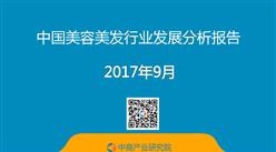 2017年中國美容美發行業發展分析報告(附全文)