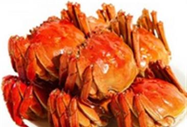 吃蟹季来临:阳澄湖大闸蟹却产量大减 价格暴涨15%