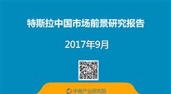 特斯拉中國市場前景研究報告(全文)