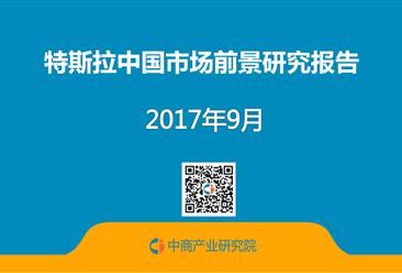 特斯拉中国市场前景研究报告(全文)