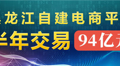 黑龍江163個自建電子商務平臺半年實現網絡交易額94億元 同比增長14.8%