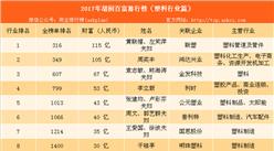 2017年胡润中国塑料行业百富榜:猜猜谁是塑料大王(附榜单)