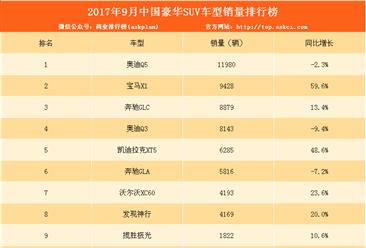 2017年9月豪華SUV銷量排名:奧迪Q5第一 唯一銷量過萬(附排名)