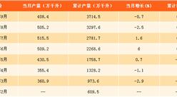 2017年1-9月中国啤酒产量分析:啤酒产量同比增长0.5%(附图表)