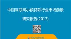 2017年互联网小额贷款行业政策/公司及发展前景预测分析