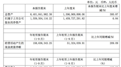 2017年前三季度维格娜丝营收15.45亿元 同比暴增186%