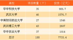 武汉五大高校校友累计投资7733.4亿 2017武汉招商引资金额将超2万亿(附图表)