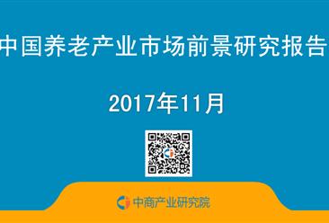2017年中国养老产业市场前景研究报告(简版)