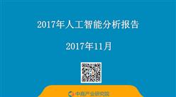 2017年人工智能分析報告(附報告全文)