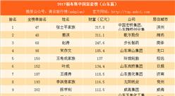 2017福布斯中国富豪榜(山东篇):张士平家族家族财富最多(附榜单)