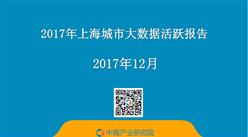 2017年上海城市大数据活跃报告(精简版)