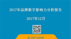 2017年品牌数字影响力分析报告(全文)