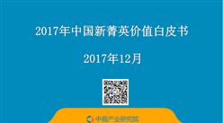 2017年中国新菁英价值白皮书 (全文)