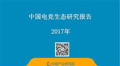 2017年中国电竞生态研究报告